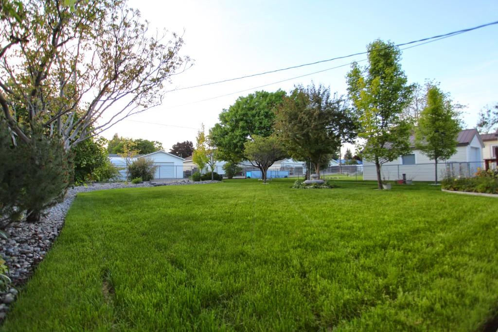 Backyardgrassplay